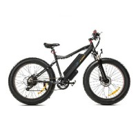 ELECTRIC MOUNTAIN BIKE STEAMOON M02